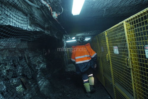 Underground coal mine worker walking next to wire mesh supports and cage  - Mining Photo Stock Library