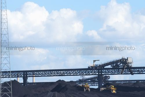 Two dozers stock piling coal at wharf terminal.  overhead conveyor and reclaimer in background.  sea water in foreground. - Mining Photo Stock Library