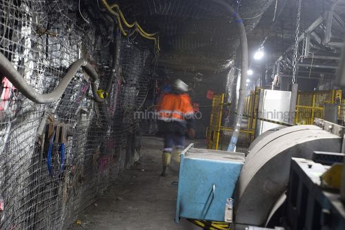 Underground coal mine worker engineer walking through tunnel with coal conveyors moving above.  qide photo. - Mining Photo Stock Library