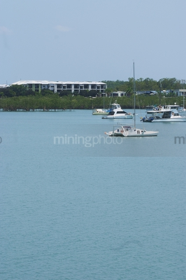 Vertical image of boats in harbour or a bay with mangroves and development behind.  vertical photo. - Mining Photo Stock Library