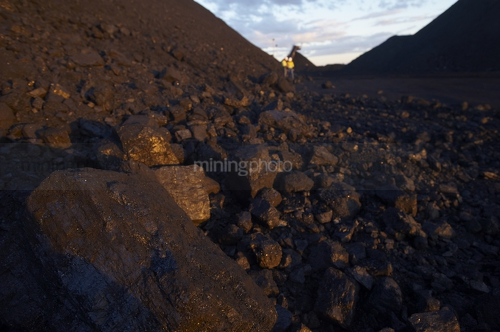 Close up photo of coal with mine workers male and female in full PPE in background out of focus.  shot at dusk with great afternoon light.  vertical photo. - Mining Photo Stock Library