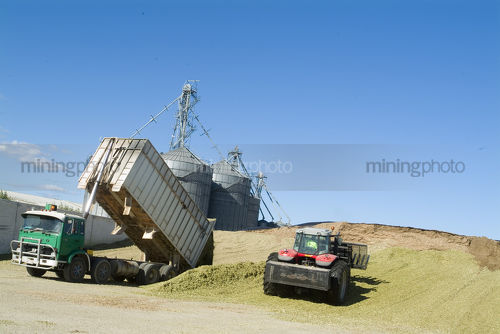 Truck delivering harvested corn to tractor for airing prior to silage. - Mining Photo Stock Library