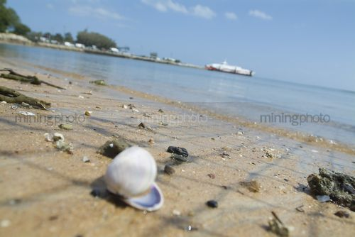 Shells on a beach close up with car ferry loading in background.   - Mining Photo Stock Library