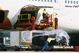 Mining Photo Stock Library - airline cargo freight boxes being manually loaded onto boeing 747 ( Weight: 2  New Image: NO)