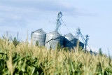 Mining Photo Stock Library - corn growing in field with storage silos in background ( Weight: 1  New Image: NO)