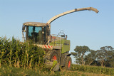 Mining Photo Stock Library - harvester parked at corn silage project ( Weight: 5  New Image: NO)