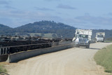 Mining Photo Stock Library - feed trucks delivering lunch to beef cattle on feedlot. ( Weight: 5  New Image: NO)