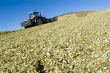 Mining Photo Stock Library - tractor aerating silage corn for storage. ( Weight: 2  New Image: NO)