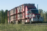 Mining Photo Stock Library - large multi deck semi trailer road train loaded with beef cattle  ( Weight: 3  New Image: NO)