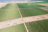 Mining Photo Stock Library - aerial of agriculture field in western queensland ( Weight: 5  New Image: NO)
