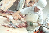 Mining Photo Stock Library - worker in abattoir dressing meat ( Weight: 3  New Image: NO)