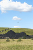 Mining Photo Stock Library - loader stockpiling coal in teh background out of focus.  revegetation in focus in the foreground.  generic and selective focus shot. ( Weight: 1  New Image: NO)