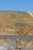Mining Photo Stock Library - hillside replanting at a mine site  green plastic plant protectors show where the revegetation and rehab is been done. ( Weight: 1  New Image: NO)